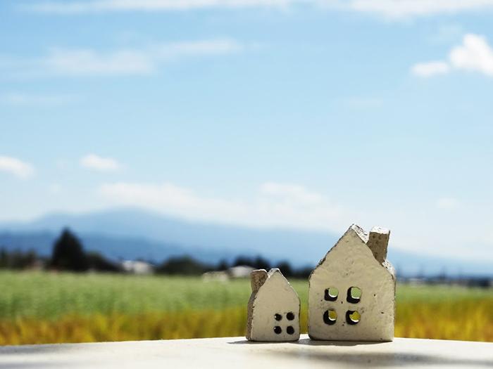 家のおもちゃが草の上に乗っている
